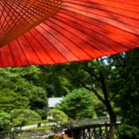 タイに行って気づいた日本のいい所と悪い所【日本脱出は諦めた】