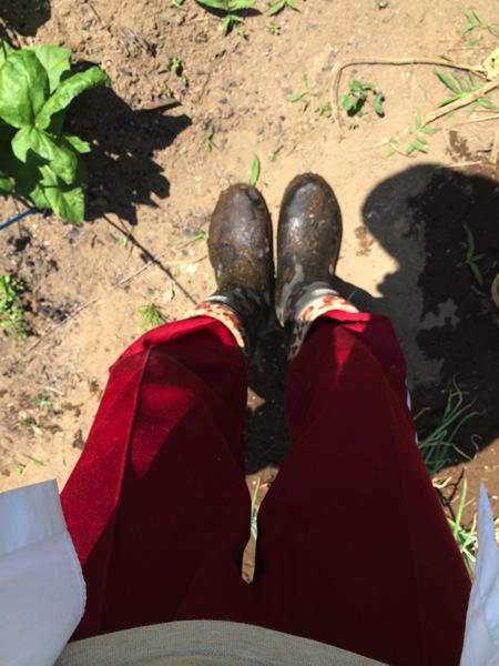 老後の生活では田舎暮らしをして畑を持とうと考えている人に見てほしい画像と動画