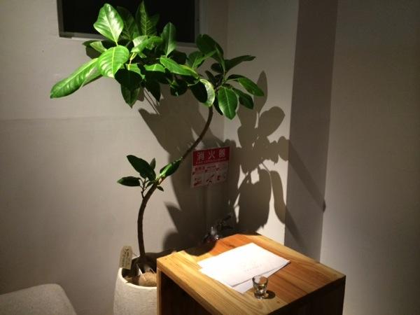渋谷にある森の図書室