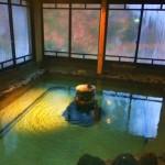 【新潟】湯治で身体を癒せる温泉宿「自在館」で充電してきた!俺、東京で消耗してたよ。。