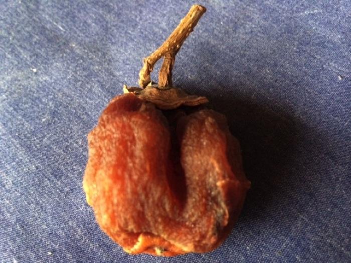 山形の名物「干し柿」とさがえ屋のせんぺい