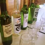 山梨県甲州市でワインを飲みながら屋外パーティー!日帰り旅行にぴったりな若尾果樹園は超おすすめ #勝沼町 #マルサン葡萄酒