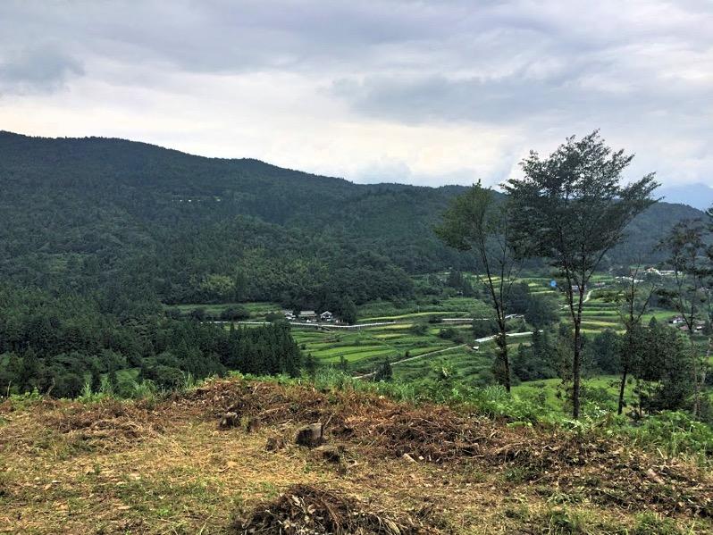 高知県本山町の自然が素晴らしい