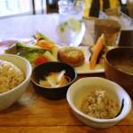 広島県尾道市の「やまねこカフェ」にてバファリン以上に優しい「やさいランチ」を食べてきた話