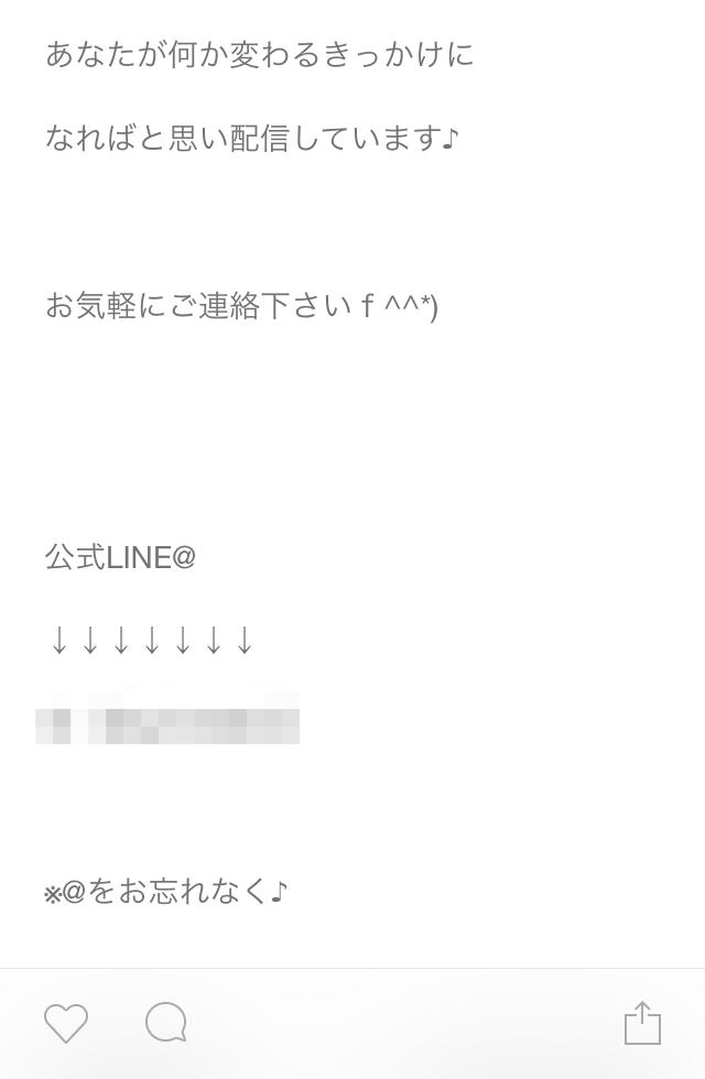 IMG 7445