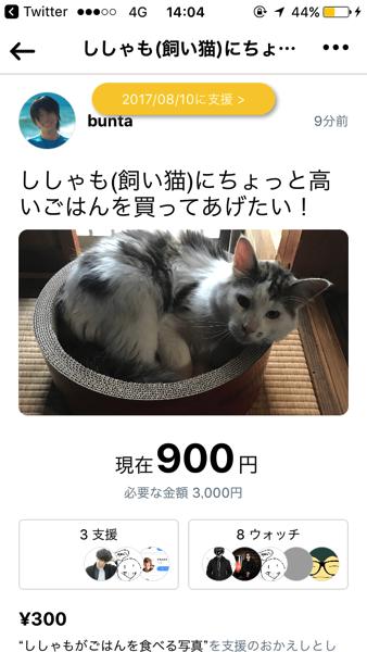 IMG 3019